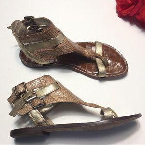 Sam Edelman Grenna Leather Sandals